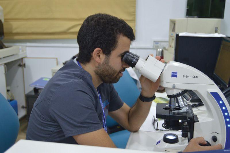 lab-test
